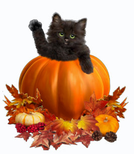 Kitty Thanksgiving Gifts On Zazzle