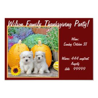 Thanksgiving Maltese puppies party invitation