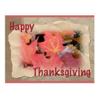 Thanksgiving Maple Leaves Coordinating Items Postcard