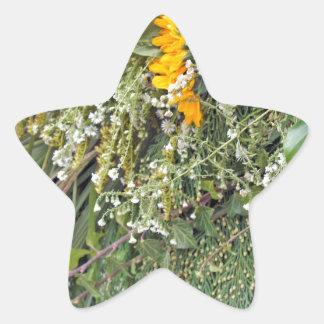 thanksgiving parade star sticker