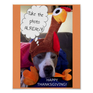 Thanksgiving - Pathetic Pittie Print