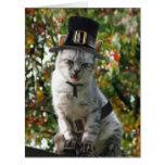 Thanksgiving Pilgrim Cat Greeting Card