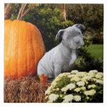 Thanksgiving Pitbull puppy Tiles