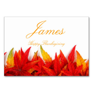 Thanksgiving Place Cards With Fall Leaves