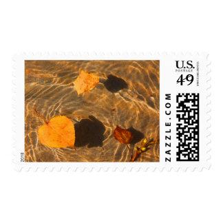 Thanksgiving Postage Stamp by RoseWrites