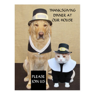 Thanksgiving Postcard/Invitation