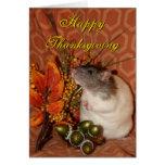 Thanksgiving rat card