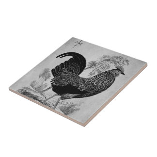 Thanksgiving Rooster in Monochrome Ceramic Tile