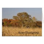 Thanksgiving Scene Cards