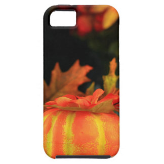 Thanksgiving table iPhone SE/5/5s case