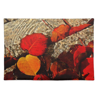 Thanksgiving Table Place Mats