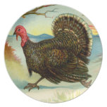 Thanksgiving Turkey Run Plates