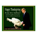Thanksgiving Turkeys - MAIL DIRECTLY TO RECIPIENT Postcard