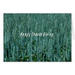 Thanksgiving wheat greeting card