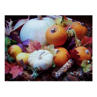 Thanksgiving Wishes Postcard at Zazzle