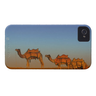 Thar desert, Rajasthan India. Camels along the iPhone 4 Case