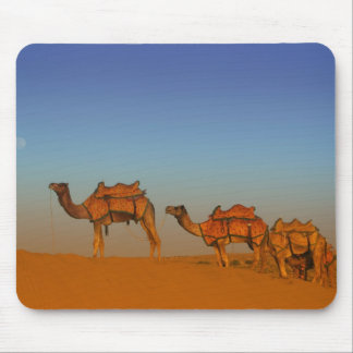Thar desert, Rajasthan India. Camels along the Mouse Pad