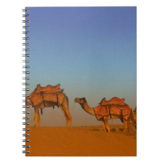 Thar desert, Rajasthan India. Camels along the Spiral Notebook