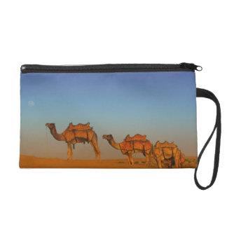 Thar desert, Rajasthan India. Camels along the Wristlet Purse