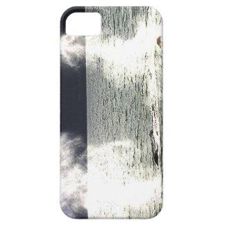 Thar soplan el Haida Gwaii del canalón de dos iPhone 5 Carcasa