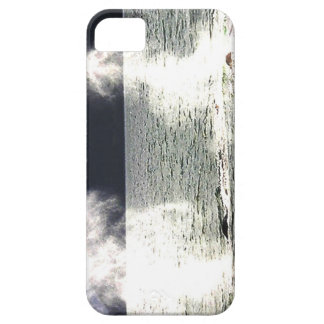 Thar They Blow Two Hunchbacks Spout  Haida Gwaii iPhone SE/5/5s Case