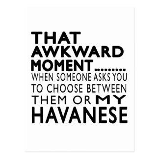 That Awkward Moment Havanese Postcard