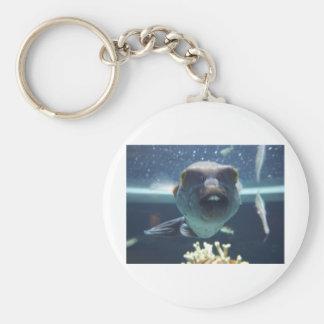 That Bucktooth Fish Basic Round Button Keychain