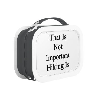 That Is Not Important Hiking Is Yubo Lunchbox