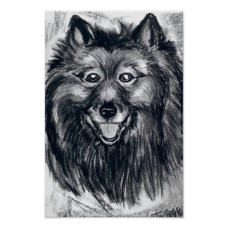 That Keeshond Smile Poster