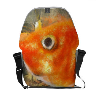 That large eye courier bag