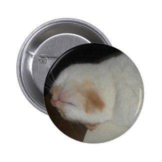 That Stupid American's Cat Hector Button