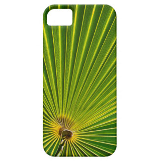 Thatch palm frond iPhone 5 covers