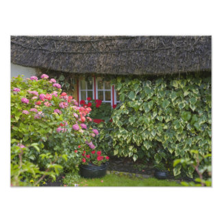 Thatched cottage, Adare, County Limerick, Photo Print