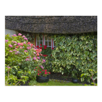 Thatched cottage, Adare, County Limerick, Postcard