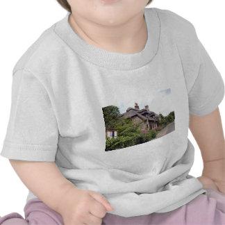 Thatched cottage, United Kingdom 5 Tees
