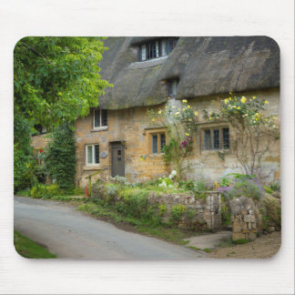 Thatched Roof home Mousepads