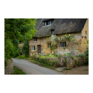 Thatched Roof home Poster