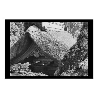Thatched Roof Japan Black Poster