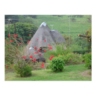 Thatched Roof Postcard