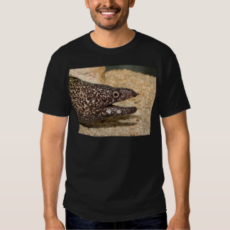 That's a Moray! Shirt