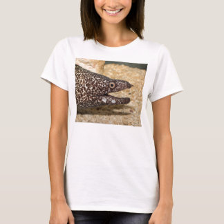 That's a Moray! Tee Shirt