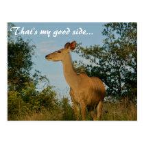 That's My Good Side Postcard