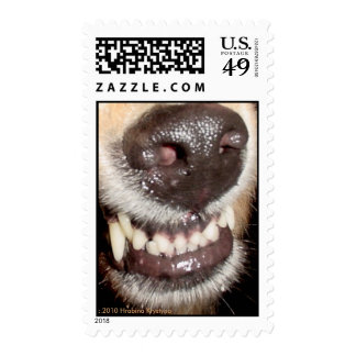 THAT'S NOT RUDOLPH'S NOSE! STAMP