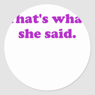 Thats What She Said. Classic Round Sticker