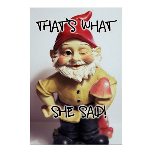That's What She Said Gnome Poster