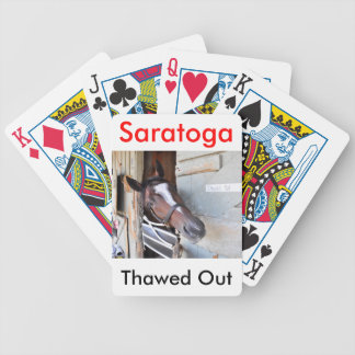 Thawed Out Bicycle Playing Cards