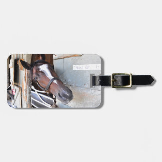 Thawed Out Luggage Tag