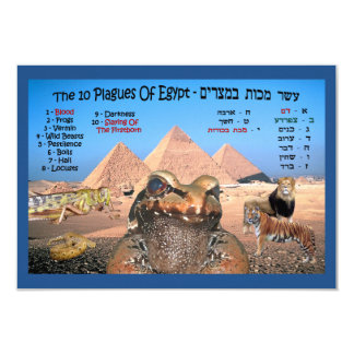 The 10 Plagues Of Egypt Card