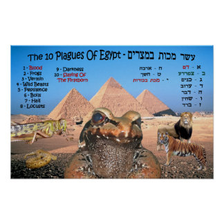 The 10 Plagues Of Egypt - English & Hebrew Poster