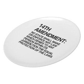THE 14TH AMENDMENT PARTY PLATE